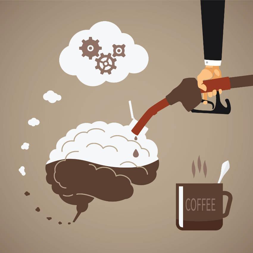 Koffie hersenen